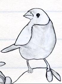 Bird and Monster